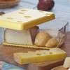 תמונה של קופסה מעוצבת לאחסון ושמירת טריות גבינות